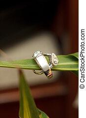 ring, wedding