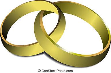 rings., vector, ilustración, boda