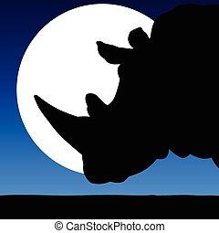 rinoceronte, testa, in, il, chiaro di luna