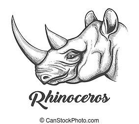 rinoceronte, testa