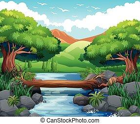 rio, através, cena, floresta