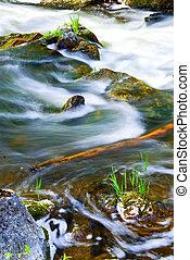 rio, através, madeiras