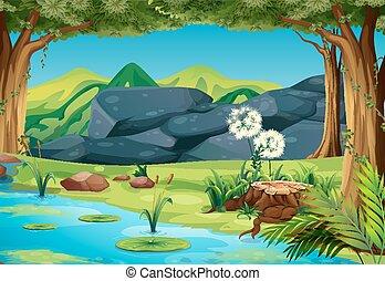 rio, cena, floresta