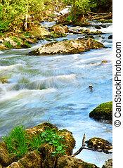 rio, correntezas