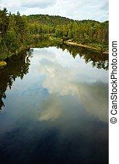 rio, corridas, através, floresta
