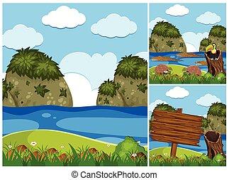 rio, crocodilos, três, cenas, natureza