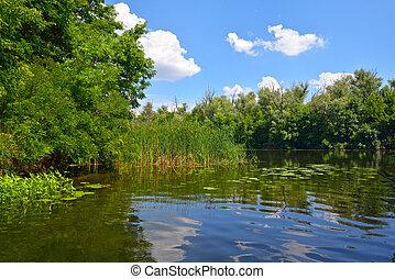 rio, dia ensolarado