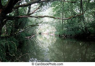 rio, executando, através, a, madeiras