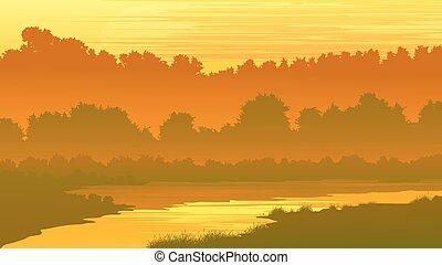 rio, floresta, sunset.
