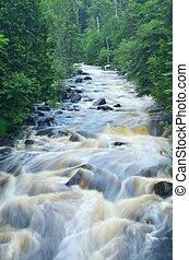 rio, fluir, através, a, madeiras