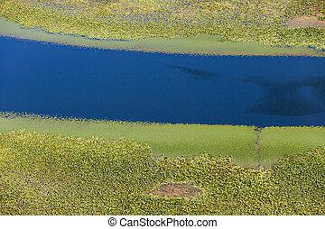 rio, fluxos, através, verdes