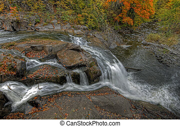 rio, outono, floresta, paisagem, 52