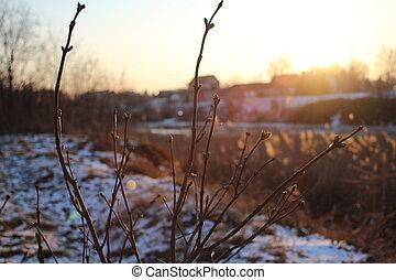 rio, paisagem inverno