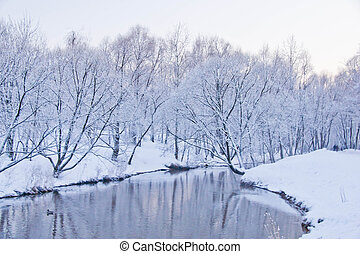 Rio, parque, Inverno, Dia