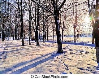 rio, parque, inverno