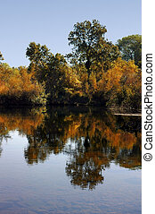Postcard Autumn Reflection of Riparian Growth in Quiet Pool, Stanislaus River, Sierra Nevada Foothills, California