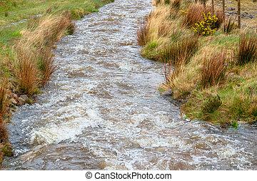 riparian scenery in Connemara, a area in Ireland