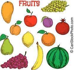 Ripe and fresh fruits colorful sketch symbol - Colored...