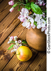 Ripe apple and blossoming branch of an apple-tree in a clay jar