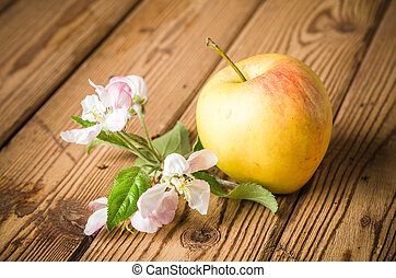 Ripe apple and blossoming branch of an apple-tree on a wooden surface, close-up