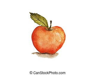 Ripe apple with a leaf