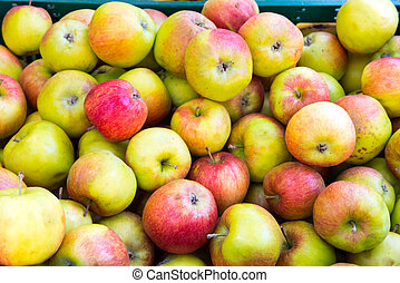 Ripe apples for sale