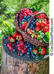 Ripe berries in basket