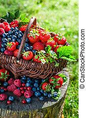 Ripe berries in sunny day