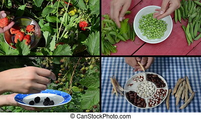 ripe berry legume collage