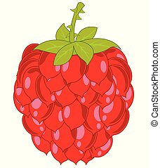 Ripe berry raspberry on white background is insulated
