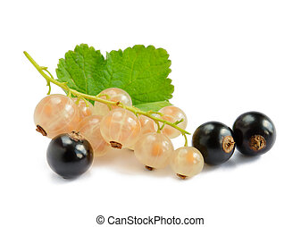 Ripe Black and White Currants with Green Leaf Isolated on White