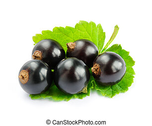 Ripe Black Currants with Green Leaf Isolated on White Background