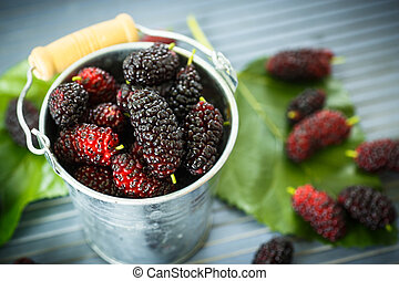 mulberry - ripe black mulberry in the bucket on the table