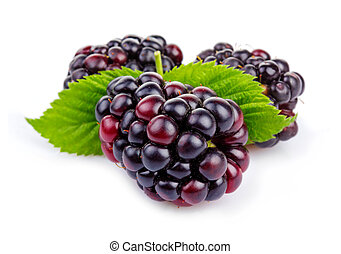 Ripe blackberries with green leaves isolated