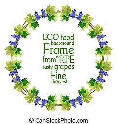 Ripe blue grape frame