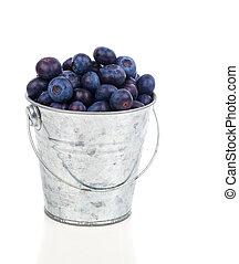 ripe blueberries in metallic bucket, on white background