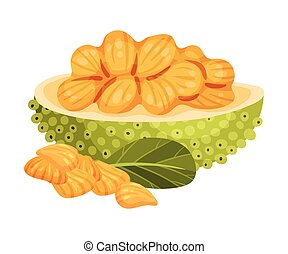 Ripe Bright Jackfruit with Green Seed Coat and Cut Section ...
