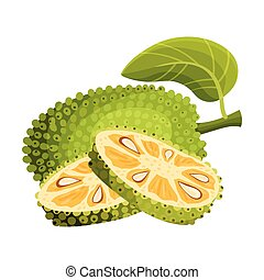 Ripe Bright Whole Jackfruit with Green Seed Coat and Slices ...