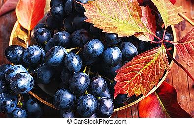 bunch of autumn grape