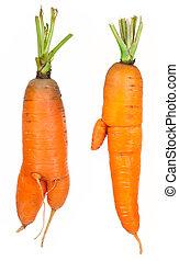 Ripe carrots