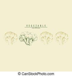 Ripe cauliflower illustration - Ripe cauliflower on light...