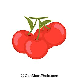 Ripe Cherries Vector