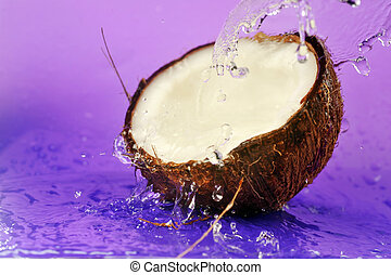 ripe coconut and water splashes on violet