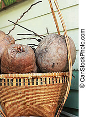 Ripe coconut in a basket - a vintage style.