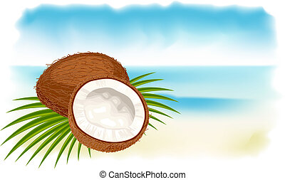 Ripe coconuts, sea and beach.