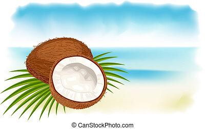 Ripe coconuts, sea and beach. Vector illustration.