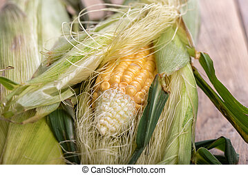 Ripe corn leaves, not peeled on a wooden background.