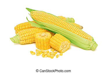 Ripe corn on the cob with green leaves (isolated) - Ripe...