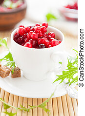 ripe cranberries in a white cup