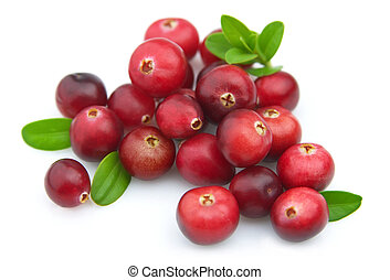 Ripe cranberry - Ripe berries of a cranberry on a white...